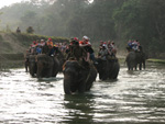 По реке, где живут крокодилы