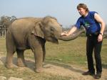 В слоновьем питомнике. Этому малышу только 4 года